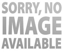 Johnson Pump Check Valve Flapper, L1600 2200 Pumps